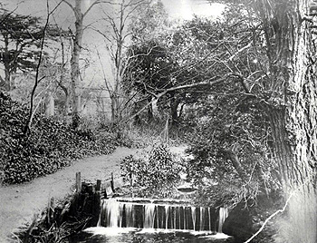 The waterfall in the Rectory garden [Z50/64/7]